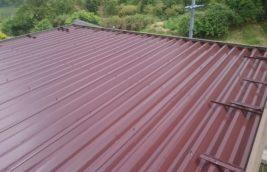戸建住宅 屋根折半塗装<br>(愛知県犬山市)
